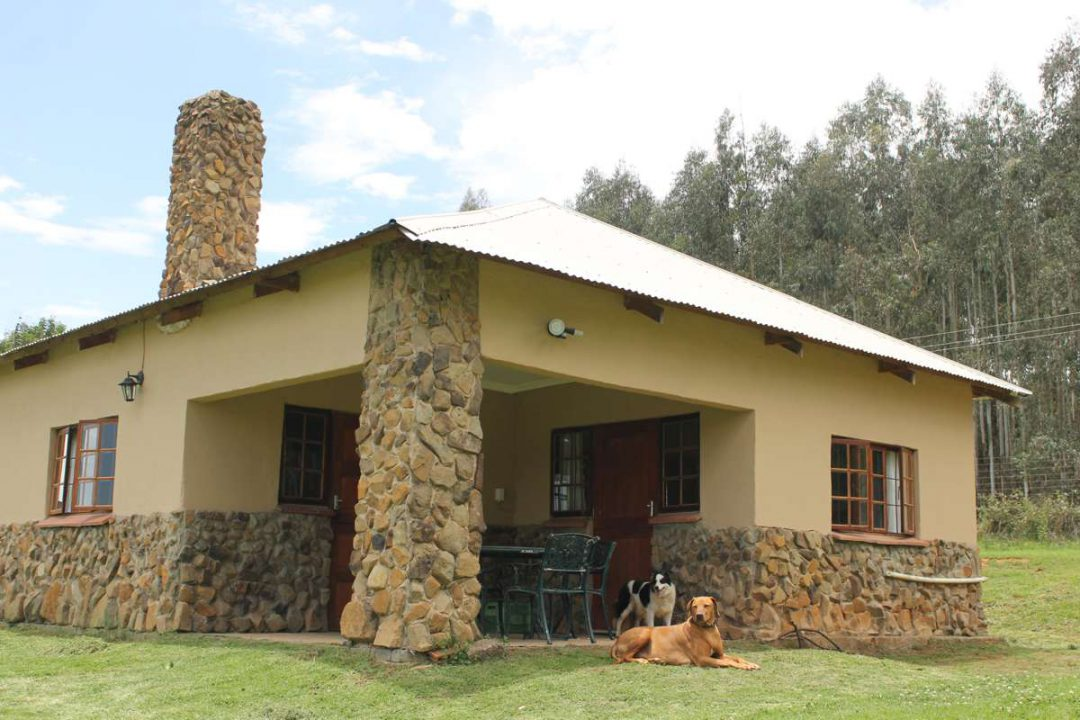 Two-Bedroom Pet-Friendly Mountain-Facing Self-Catering Cottage